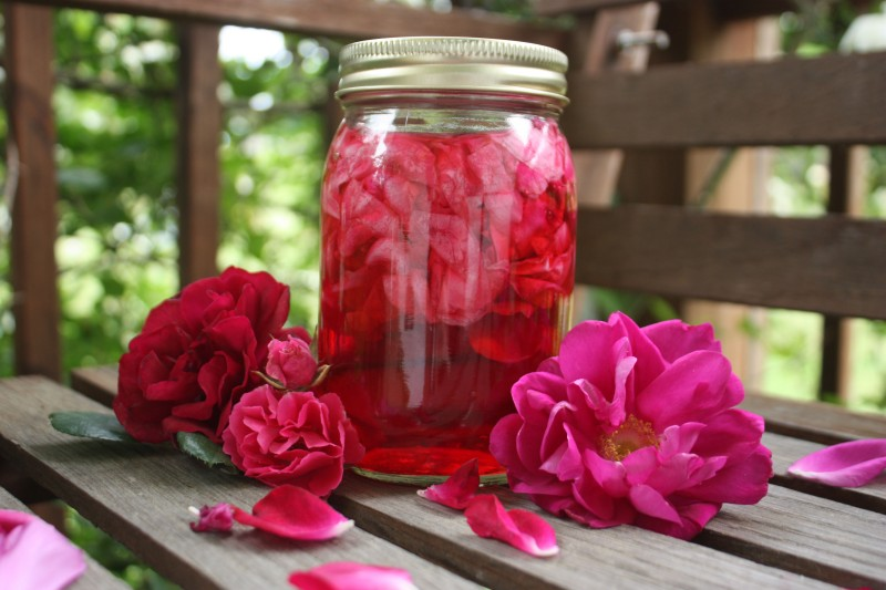 Rosen og hybenlikør