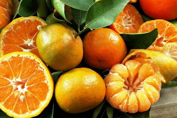 Triple Sec – Citruslikør